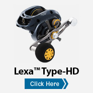 Lexa™ Type-HD