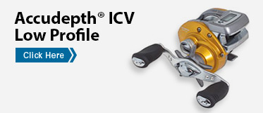 Accudepth® ICV Low Profile